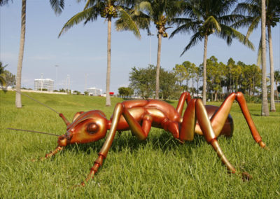 "Ant with no egg Bronze, 2006 33""h x 138""w x 128""d"