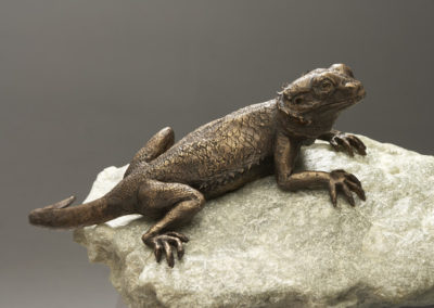 Spike, Bearded Dragon Bronze Life size
